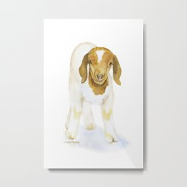 Nubian Goat Watercolor Metal Print