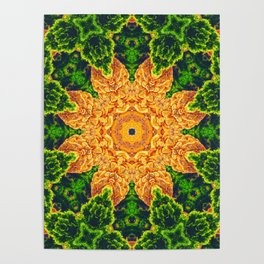 Mystic Desert Mandala Poster