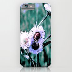 dainty Slim Case iPhone 6s