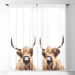 Highland Cow Portrait Blackout Curtain