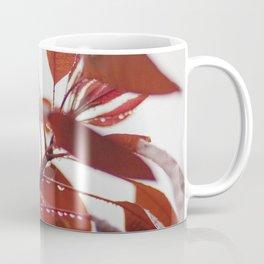 Red leaves in a London Fog by Diana Eastman Coffee Mug