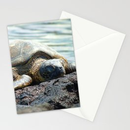 Turtle - Rest After Your Long Journey Stationery Cards