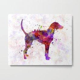 American Foxhound in watercolor                   Metal Print