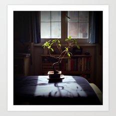 Zen Life Art Print