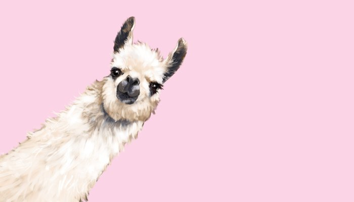 Sneaky Llama in Pink Pillow Sham