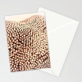 Oxidized Landscape Pink Stationery Cards
