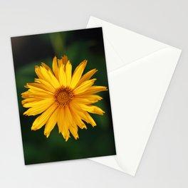 Maximilian Sunflower Stationery Cards