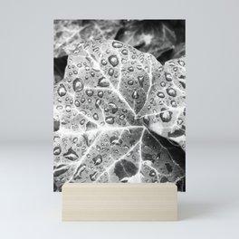 A Million Reflections Mini Art Print