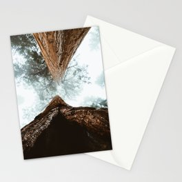 Stand in Awe of the Giant Forest Stationery Cards