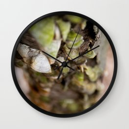 Fungus in Springtime Wall Clock