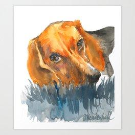 Curious Beagle Art Print