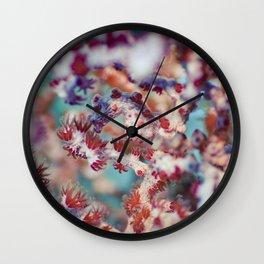 Brigebanti's pygmy seahorse Wall Clock