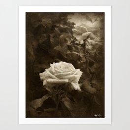 Pink Roses in Anzures 5 Antiqued Art Print