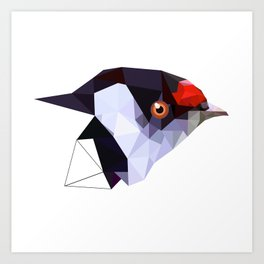 Geometric bird Tangarazinho Black Gray red Art Print