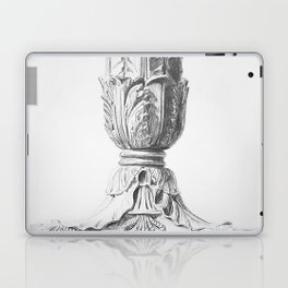 Lion's Feet Laptop & iPad Skin