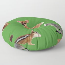 Backyard Critters in Green Floor Pillow