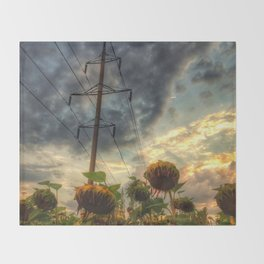 field of faded sunflowers  Throw Blanket