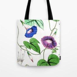 A Purging Pharbitis Vine in full blue and purple bloom - Vintage illsutration Tote Bag