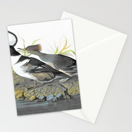Hooded Merganser - John James Audubon Stationery Cards