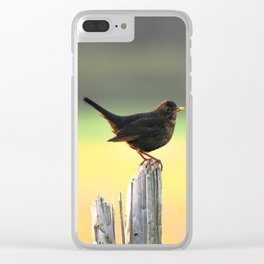 Blackbird on a Wooden Post Clear iPhone Case