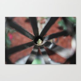 Frog Smile Canvas Print