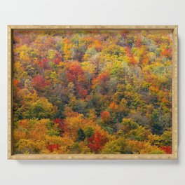 Autumn forest Serving Tray