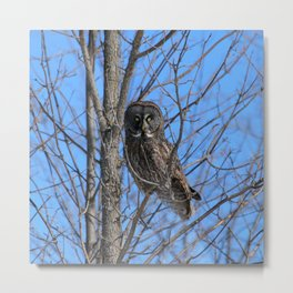 Who goes there Metal Print