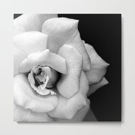 Rose Monochrome Metal Print
