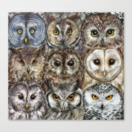 Owl Optics Canvas Print