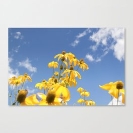 Epic Sunflowers Canvas Print