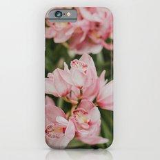 Ice-Cream Orchids iPhone 6s Slim Case