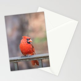 Cardinals best side Stationery Cards