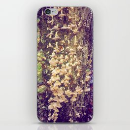 Fairy Bells and Whistles iPhone Skin