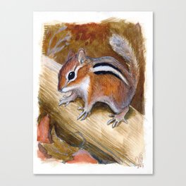 The Wary Chipmunk Canvas Print