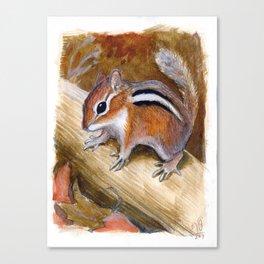 The Wary Chipmunk Canvas Print