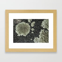 Mini Landscape Framed Art Print