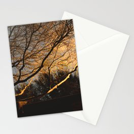 Low Exposure Street Light Illumination Stationery Cards
