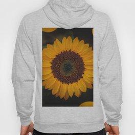 Sunflower yellow green Hoody