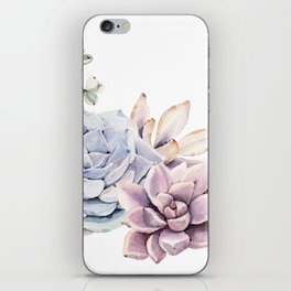 Pristine Succulents Blue and Pink iPhone Skin