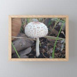 Mushroom Framed Mini Art Print