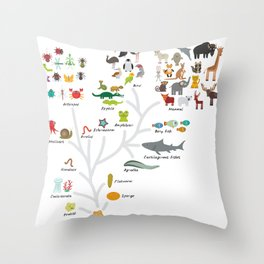 Evolution in biology, scheme evolution of animals on white. children's education back to scool Throw Pillow
