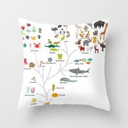 Evolution in biology, scheme evolution of animals on white. children's education back to scool Throw Pillow