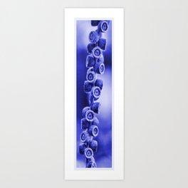 Seeds   (bv) Art Print