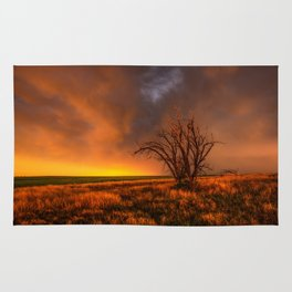 Fascinations - Warm Light and Rumbles of Thunder in Oklahoma Rug