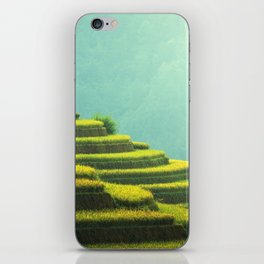 Asian agriculture iPhone Skin