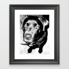 dog Framed Art Print