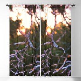 feel versus exist Blackout Curtain