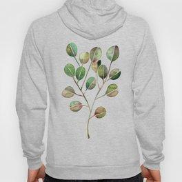 Silver Dollar Eucalyptus – Green Palette Hoody