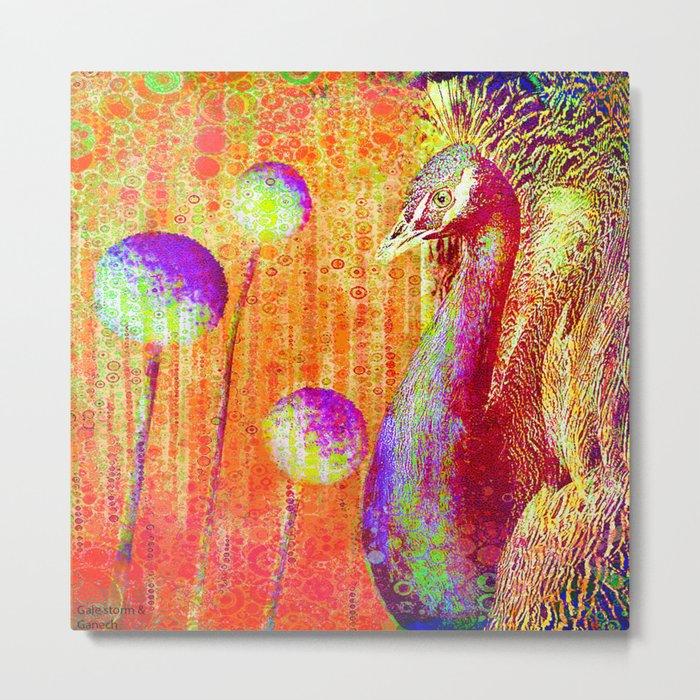 """Peacock Parade""  by Gale storm and Joe Ganech Metal Print"