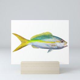 Yellowtail Snapper Mini Art Print